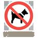 禁止寵物入住