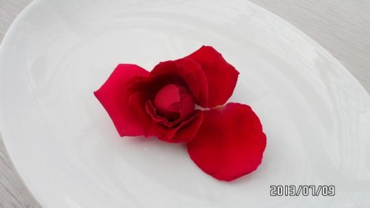 山行玫瑰花瓣