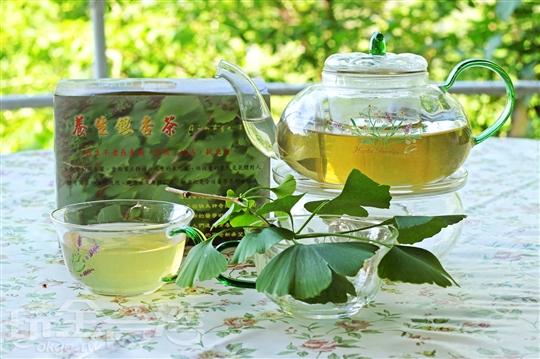 養生銀杏茶