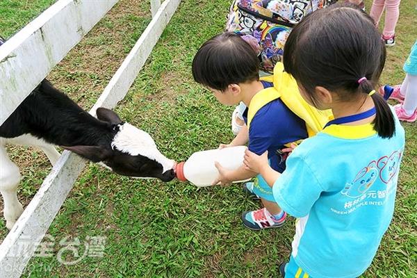 照片來源:玩全台灣旅遊網 23/39