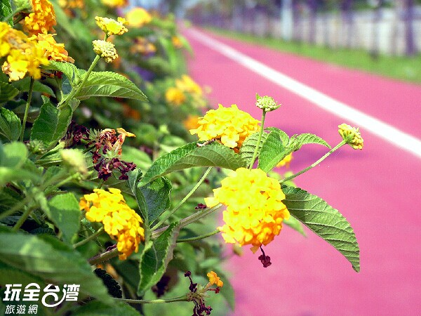 照片來源:玩全台灣旅遊網 6/7
