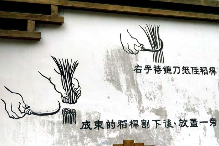 照片來源:林次台 8/10