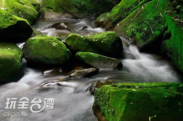照片來源:陳楊昇 3/10