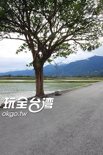 照片來源:玩全台灣旅遊網 8/9