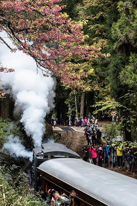 照片來源:玩全台灣旅遊網艾波利  12/12