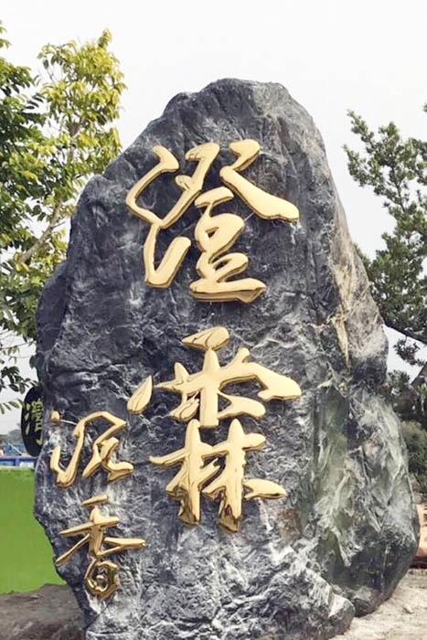 照片來源:澄霖沉香味道森林館 2/5