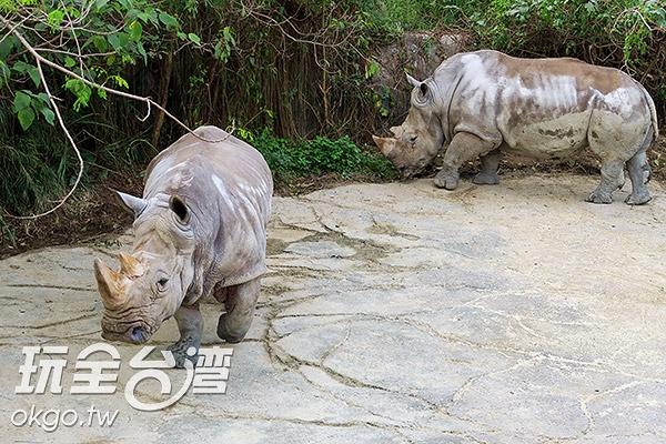 照片來源:玩全台灣旅遊網 2/27
