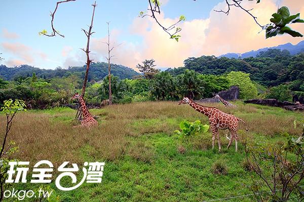 照片來源:玩全台灣旅遊網 7/27
