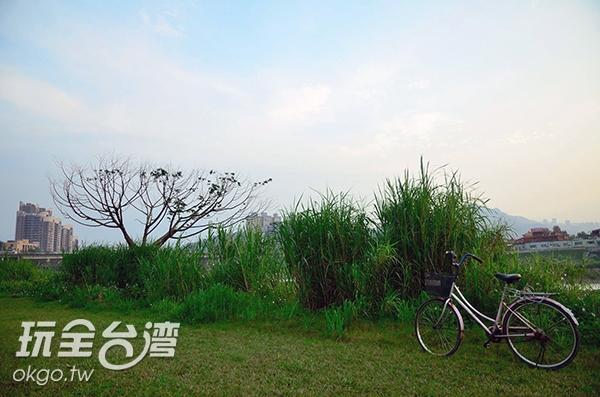 照片來源:陳楊昇 15/20