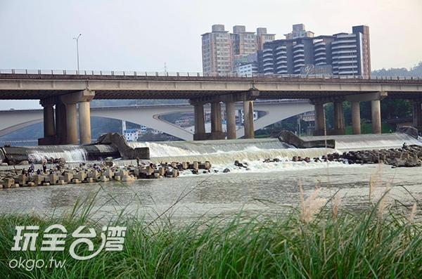照片來源:陳楊昇 19/20