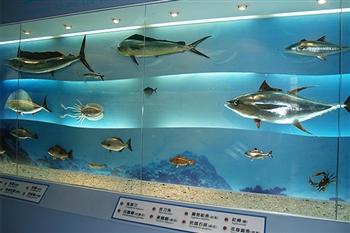 文化局海洋資源館