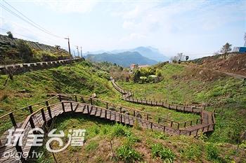 頂石棹步道群.櫻之道步道