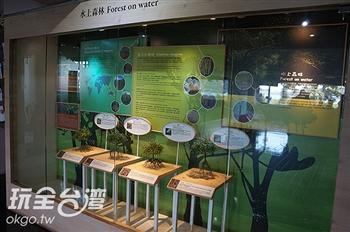 紅樹林展示館