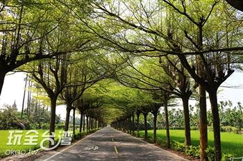 泗林健走步道