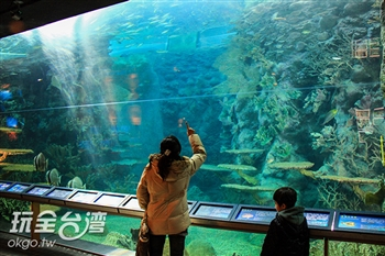 澎湖水族館(停業中)