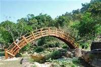 南方松製拱橋