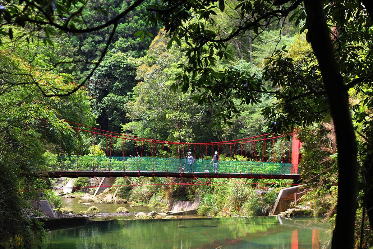 溪頭妖怪村前-盛軒森林會館