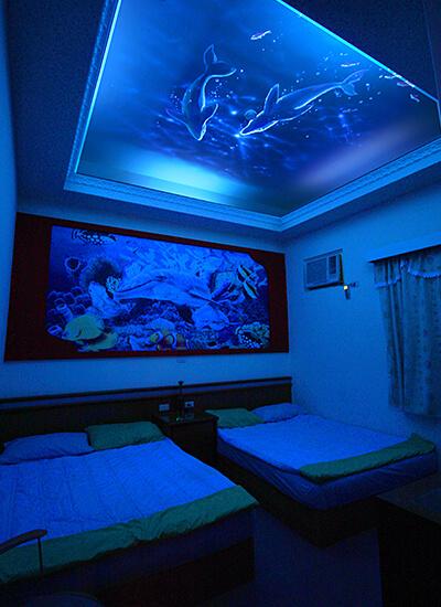 夜光彩繪-海豚神話