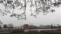 玄光寺湖景
