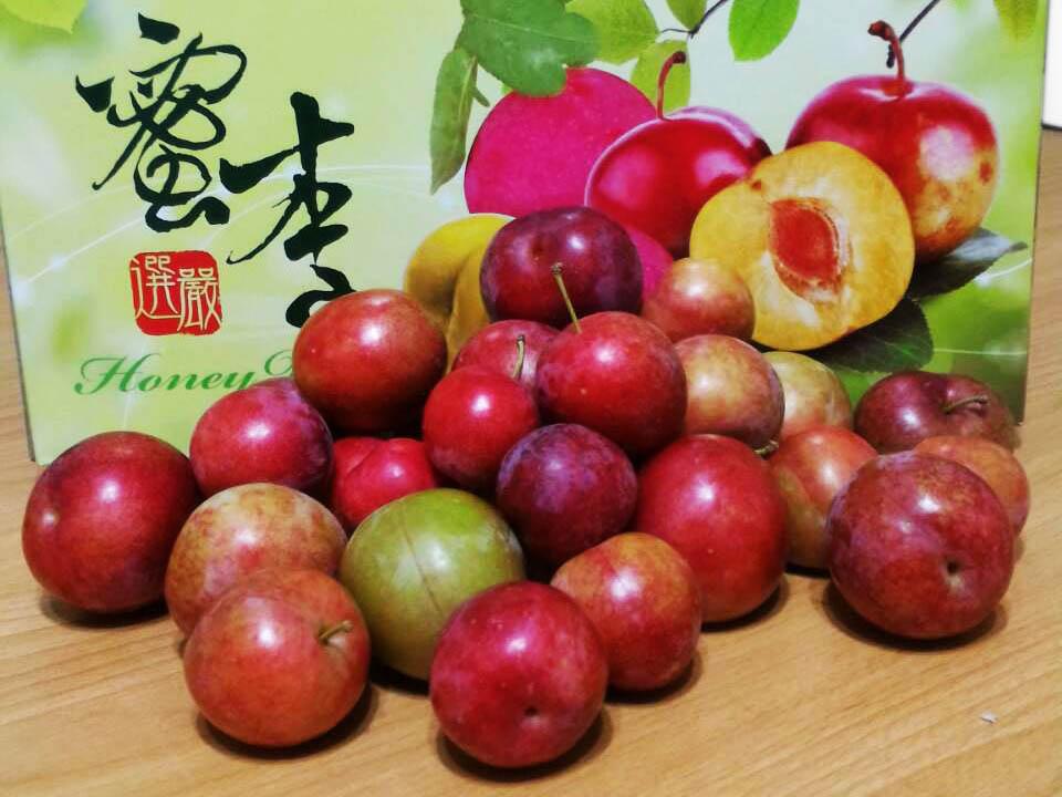 拉拉山水蜜桃-ㄚ妞果園