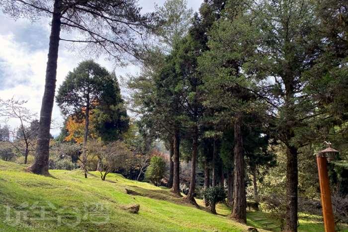 【假日就往山里趣】 這個微涼的季節裡,來阿里山最適合了啦!