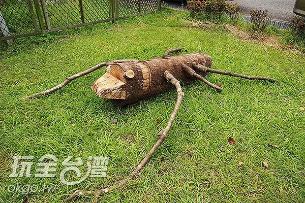 可愛的木頭工藝/玩全台灣旅遊網攝