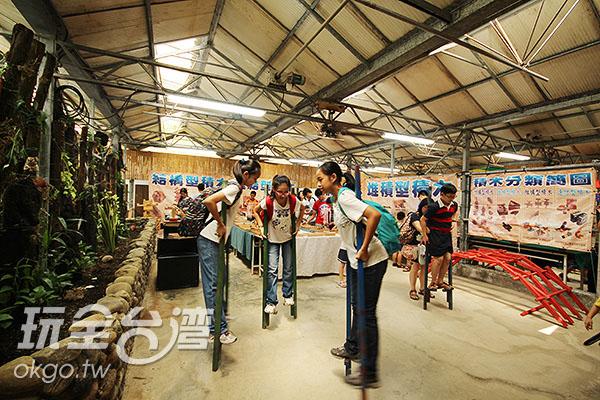 豐富多元的木頭創意童玩/玩全台灣旅遊網攝