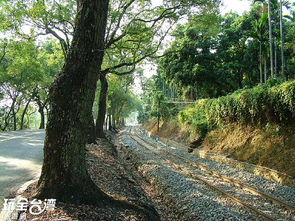 集集綠色隧道旁有火車穿梭/玩全台灣旅遊網攝