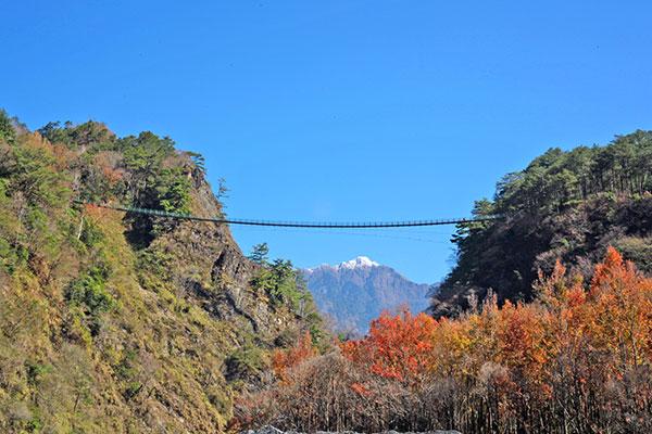 從奧萬大仰望吊橋及遠處山頭雪景/奧萬大森林遊樂區提供