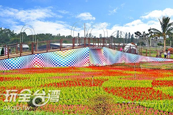 登上賞花彩虹橋可看遍花海/玩全台灣旅遊網特約記者楊昌林攝