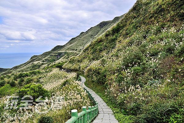 路況良好的登山步道/玩全台灣旅遊網特約記者奈奈攝