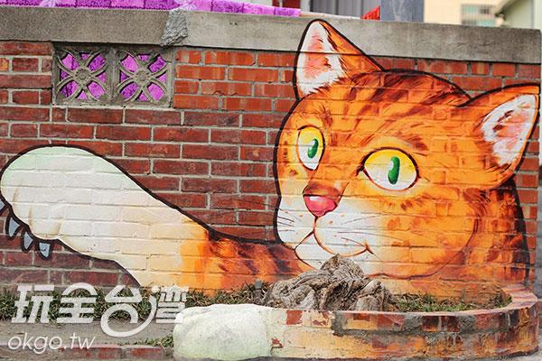 坐在貓咪的臂膀上拍張照吧~/玩全台灣旅遊網攝