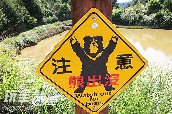 熊出沒的警示路牌。/玩全台灣旅遊網特約記者楊昌林攝