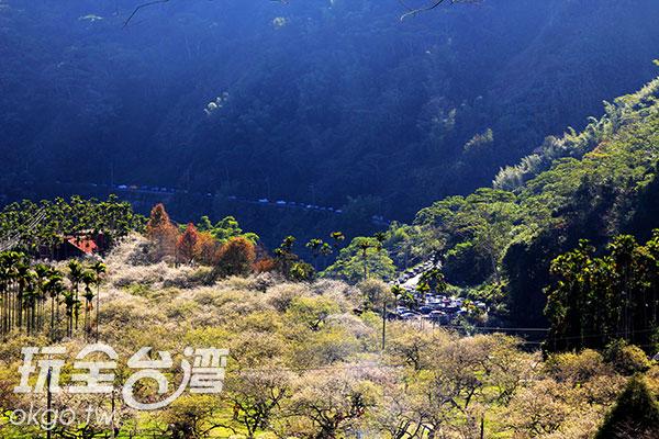 由上往下看,園區景緻一覽無遺/玩全台灣旅遊網攝