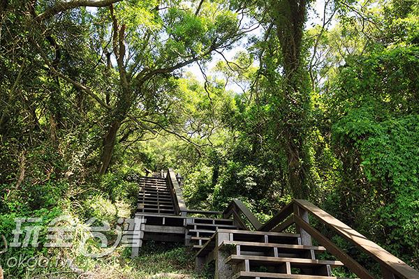 於坤坵步道享受大自然的芬多精/玩全台灣旅遊網攝