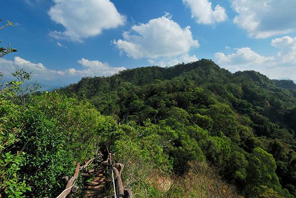 大坑步道登頂後可看到群山環繞的美景/玩全台灣旅遊網特約記者吳明倫攝