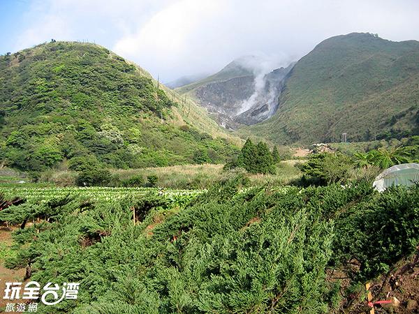新北市士林區的陽明山國家公園/玩全台灣旅遊網攝