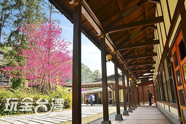 全日式木造校舍,都想轉學了/玩全台灣旅遊網特約記者陳健安攝