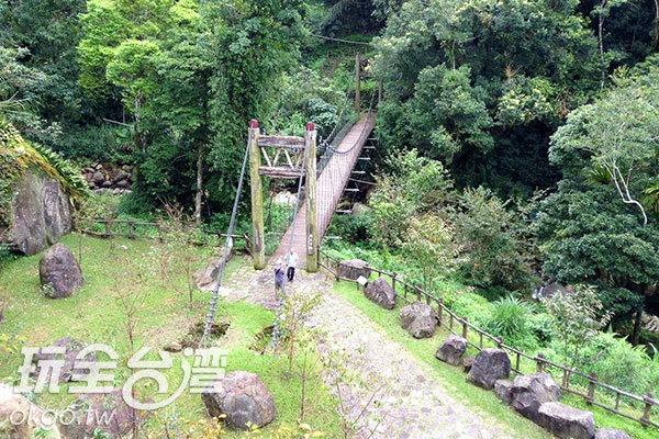 迷糊步道一路進入了森林裡頭,一片綠意盎然讓人沉醉/玩全台灣旅遊網攝