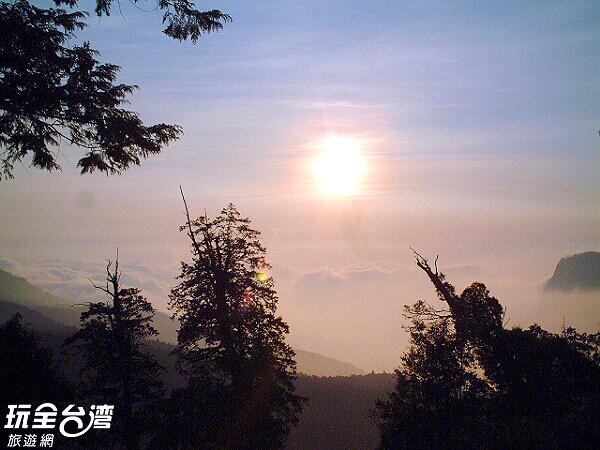 迷糊步道是由當地鄒族村民取名的唷!/玩全台灣旅遊網攝