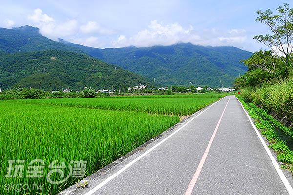 灌溉水田流水潺潺,裡頭的小生態就足夠讓親子耗費一上午。/玩全台灣旅遊網特約記者郭心怡攝