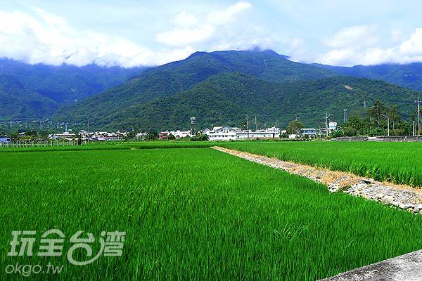 才剛剛起步,就看到無論是山還是稻田的翠綠都令人驚豔!/玩全台灣旅遊網特約記者郭心怡攝