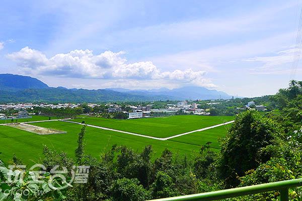 猛一回頭,沒想到已經到了這麼高的地方了!/玩全台灣旅遊網特約記者郭心怡攝