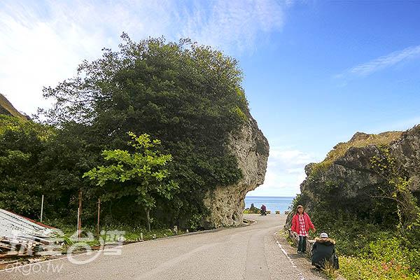 著名的「紅番石」像極頂著頭飾的印地安人/玩全台灣旅遊網特約記者陳健安攝