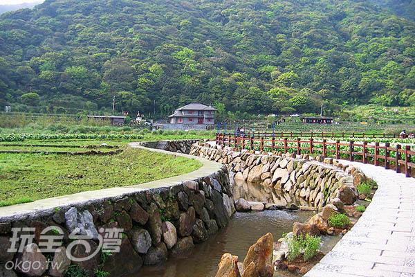 竹子湖在種植海芋前可是鼎鼎大名的蓬萊米故鄉呢/玩全台灣旅遊網攝
