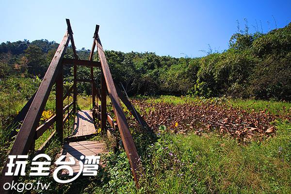保存良好的濕地孕育了螢火蟲、青蛙和蝴蝶等豐富的動植物生態/玩全台灣旅遊網攝