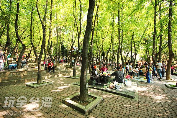 許多民眾都會戴著簡單的早午餐在樹下野餐/玩全台灣旅遊網攝
