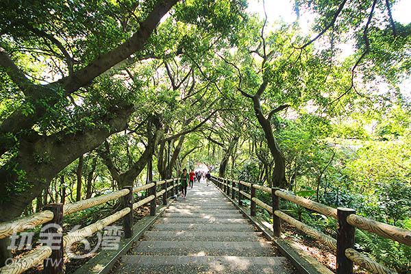 公園內的南崁溪林蔭道有著規劃完善的步道/玩全台灣旅遊網攝