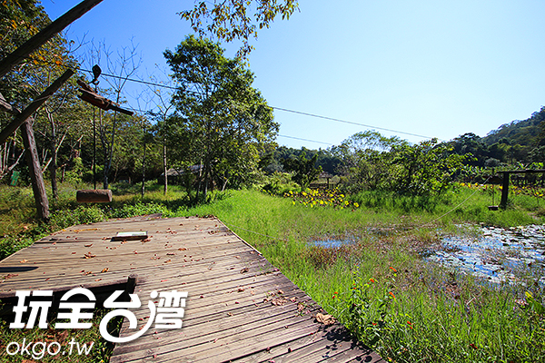 「草湳溼地」為自然湧泉的沼澤地/玩全台灣旅遊網攝