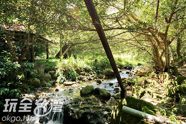 茅埔坑溼地是桃米生態村營造小組第一個以生態工法打造的河道,濕地中建有溼地公園/玩全台灣旅遊網攝